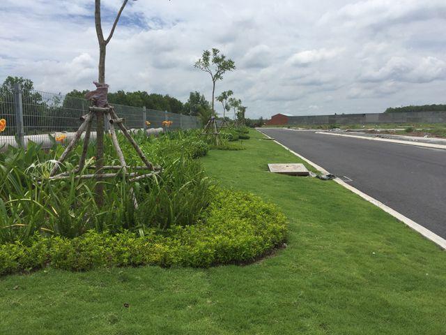 Cập nhật tiến độ Phúc An Garden 25/07/2019 - 1