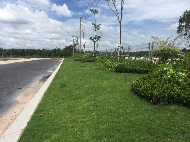 Cập nhật tiến độ Phúc An Garden 25/07/2019 - 5